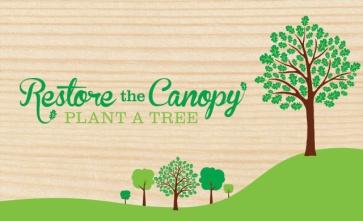 canopy_logo